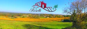 Bel Air de Rosette - Vignoble aux couleurs d'automne